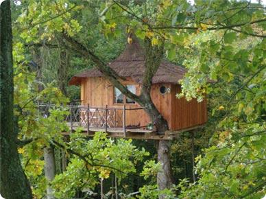 Cabana de madera ecologica